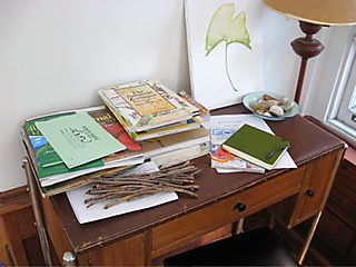 Desk with books and twigs