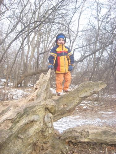 Sam on story tree