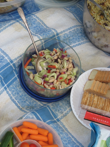 Fennel and whiite bean salad