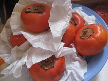 Persimmons in bowl[1]
