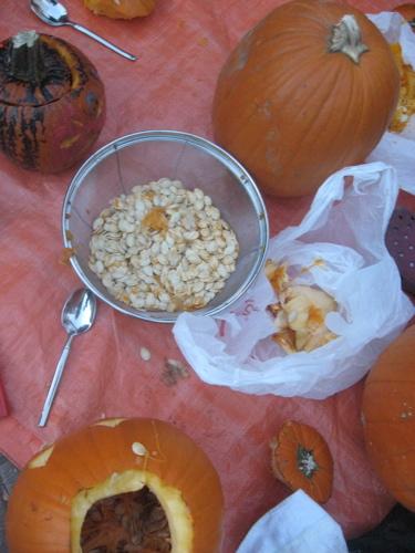 Pumpkins at bastas
