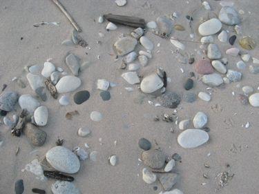 Rocks on beach at ericka's