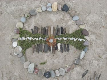 Rocks with shells, sticks