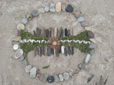 Rocks with shells, sticks