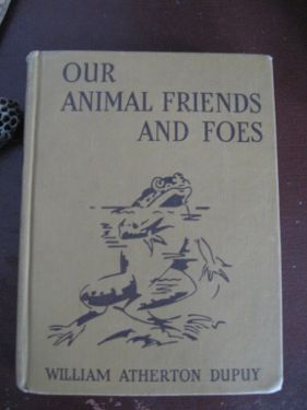 Our animal friends & foes