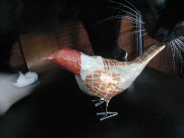 Idea bird ricky