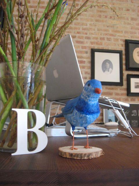 Sarah's blue bird