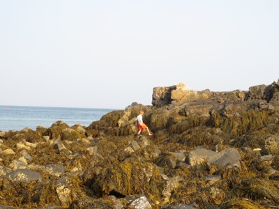 Sam on the rocks york beach