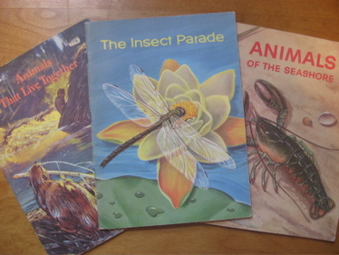 Insect_parade