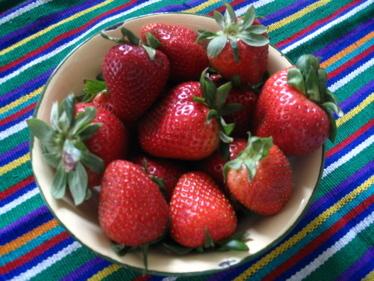 Strawberries_in_enamel_bowl